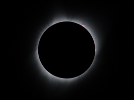 Corona, Prominences, and Flares